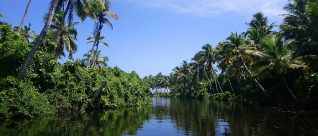 Kerala Long Weekend Tour