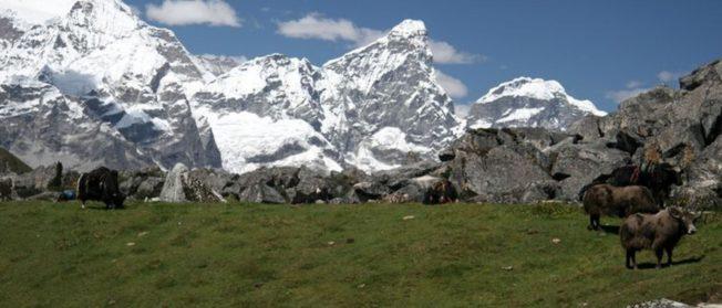 Bhutan Drukpath Trek (10 N/ 11 D)