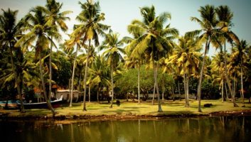 God's Own Country- Kerala